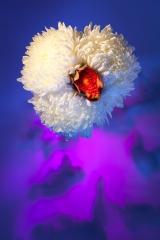 02_prakriti_flowers