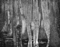 Still_Waters__06