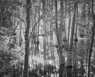 Still_Waters__13
