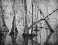 Still_Waters__15